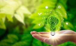 Blue economy - PMI sostenibili