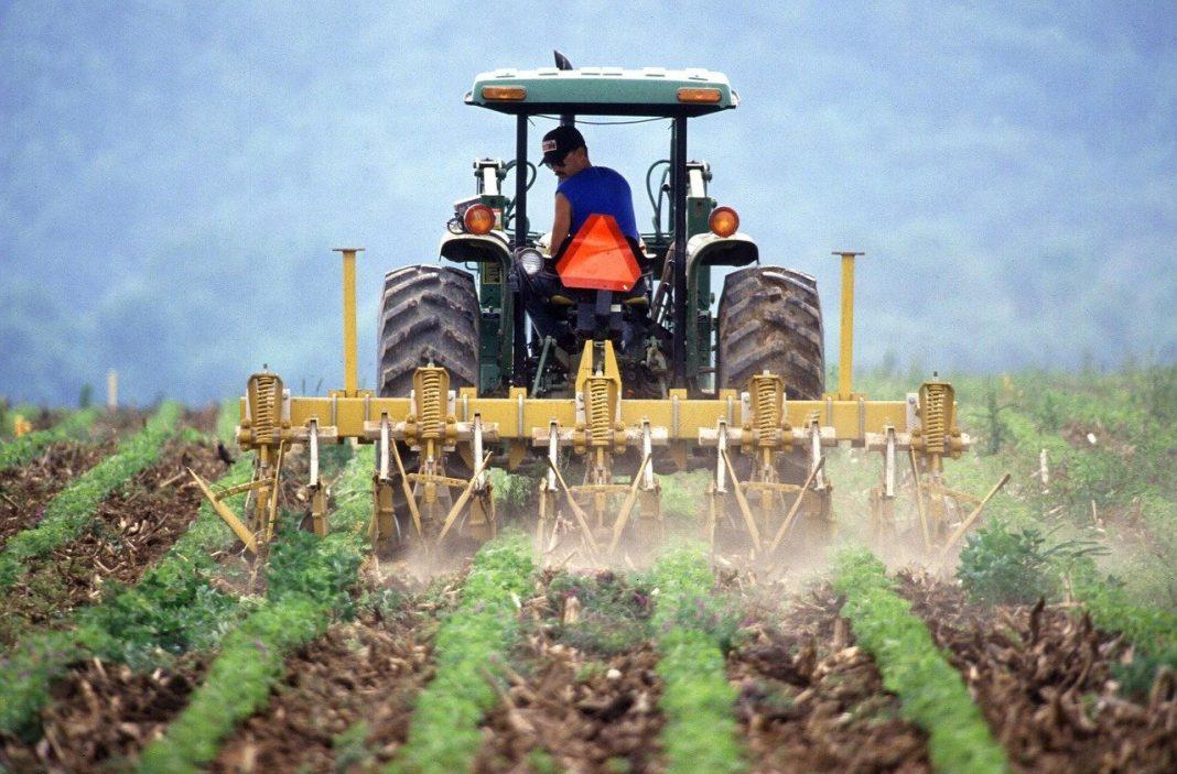 Brexit e agrolimentare