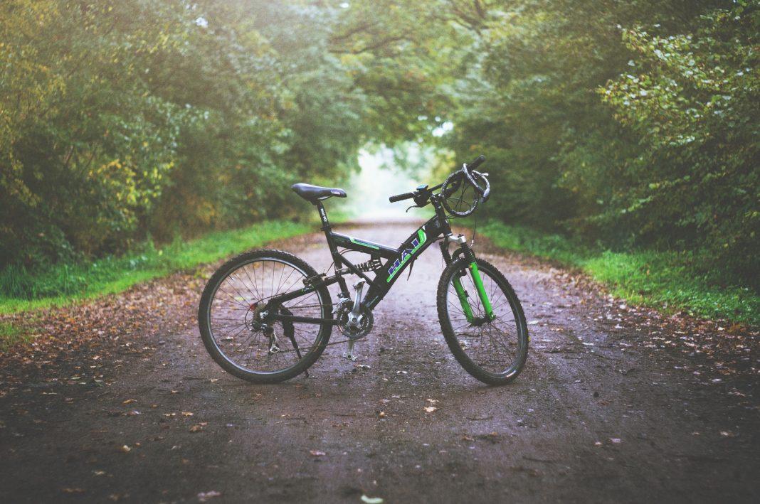 Biciclette e e bike