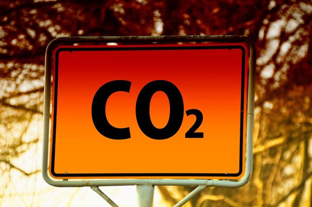 GSE: Rapporto Aste della CO2