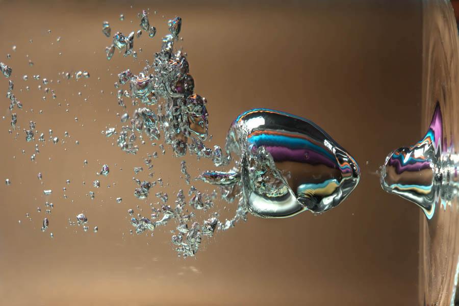 Online la mostra Dimensione-Acqua di Acquasculture